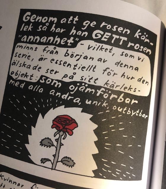bild22